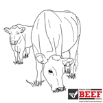 Beef Coloring Sheet